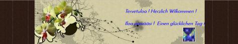 esteri kotisivu banner